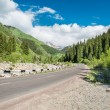 Road on  Big Almaty Lake, nature  green mountains and blue sky in Almaty, Kazakhstan,Asia at summer — Stockfoto