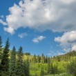 Nature of green trees and blue sky, near Medeo in Almaty, Kazakhstan,Asia at summer — Stock Photo #27036573