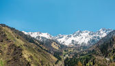Nature of mountains, snow and blue sky, road on Medeo in Almaty, Kazakhstan,Asia at summer — Stock Photo