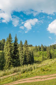 Nature of green trees and blue sky, road on Medeo in Almaty, Kazakhstan,Asia at summer — Stock Photo