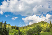 Nature of green trees and blue sky, near Medeo in Almaty, Kazakhstan,Asia at summer — Stock Photo