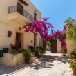 Branches of flowers pink bougainvillea bush on Balcony in street, Crete, Greece — Stock Photo