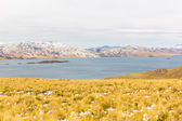 Road Cusco-Puno,Lake Titicaca, Peru,South America. Sacred Valley of the Incas. Spectacular nature of snowy mountains and blue sky — Stock Photo