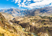 Colca Canyon, Peru,South America. The Incas to build Farming terraces with Pond and Cliff. One of the deepest canyons in the world — Stock Photo