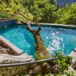 Stock Photo: Big tree in swimming pool in Small cretvillage in Crete island, Greece