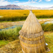Floating  Islands on Lake Titicaca Puno, Peru, South America,thatched home. Dense root that plants interweave form natural layer called Khili about one to two meters thick that support islands — Stock Photo