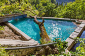 Big tree in swimming pool in Small cretan village in Crete island, Greece — Stock Photo
