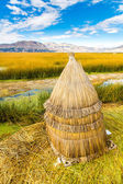 Floating Islands on Lake Titicaca Puno, Peru, South America,thatched home. Dense root that plants interweave form natural layer called Khili about one to two meters thick that support islands — Stockfoto
