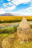 Floating Islands on Lake Titicaca Puno, Peru, South America,thatched home — Stock Photo