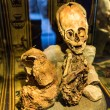 Embalmed mummy and skull in Peru. — Stock Photo