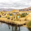 Постер, плакат: Floating Islands on Lake Titicaca Puno