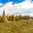 Floating  Islands on Lake Titicaca Puno — Stock Photo
