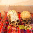 Stock Photo: Embalmed mummy and skull in Peru.