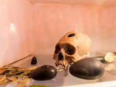 Embalmed mummy and skull in Peru — Stock Photo