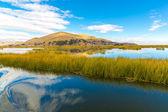 Lake Titicaca,South America — Stock Photo