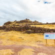 Funerary towers in Sillustani, Peru — Stock Photo #36400307