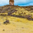 Funerary towers in Sillustani, Peru — Stock Photo #36400661