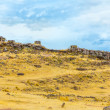 Funerary towers in Sillustani, Peru — Stock Photo #36400733