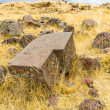 Funerary towers in Sillustani, Peru — Stock Photo #36400875