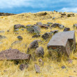 Funerary towers in Sillustani, Peru — Stock Photo #36400883