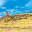 Funerary towers in Sillustani, Peru — Stock Photo #36401005