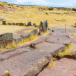 Funerary towers in Sillustani, Peru — Stock Photo #36401235