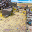 Funerary towers in Sillustani, Peru — Stock Photo #36401463