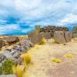 Funerary towers in Sillustani, Peru — Stock Photo #36401633