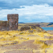 Funerary towers in Sillustani, Peru — Stock Photo #36402303