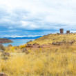 Funerary towers in Sillustani, Peru — Stock Photo #36402713