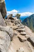 Inca Wall in Machu Picchu — Stock Photo