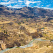 ColcCanyon, Peru — Stock Photo #37277081