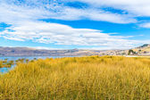 Lake Titicaca, South America — Foto Stock