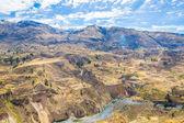 Colca Canyon, Peru — Fotografia Stock