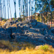 Stock Photo: Archaeological Park of Saqsaywaman