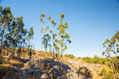 Archäologischer park von saqsaywaman — Stockfoto