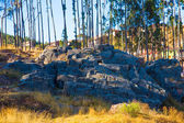 Parque Arqueológico de saqsaywaman — Fotografia Stock