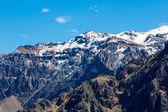 Colca Canyon — Stock fotografie
