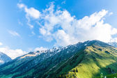 Nature near Big Almaty Lake — Stock Photo