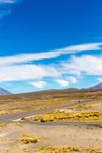 The Andes, Road Cusco- Puno — Stock Photo