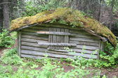 Old wooden house in the woods — Foto de Stock