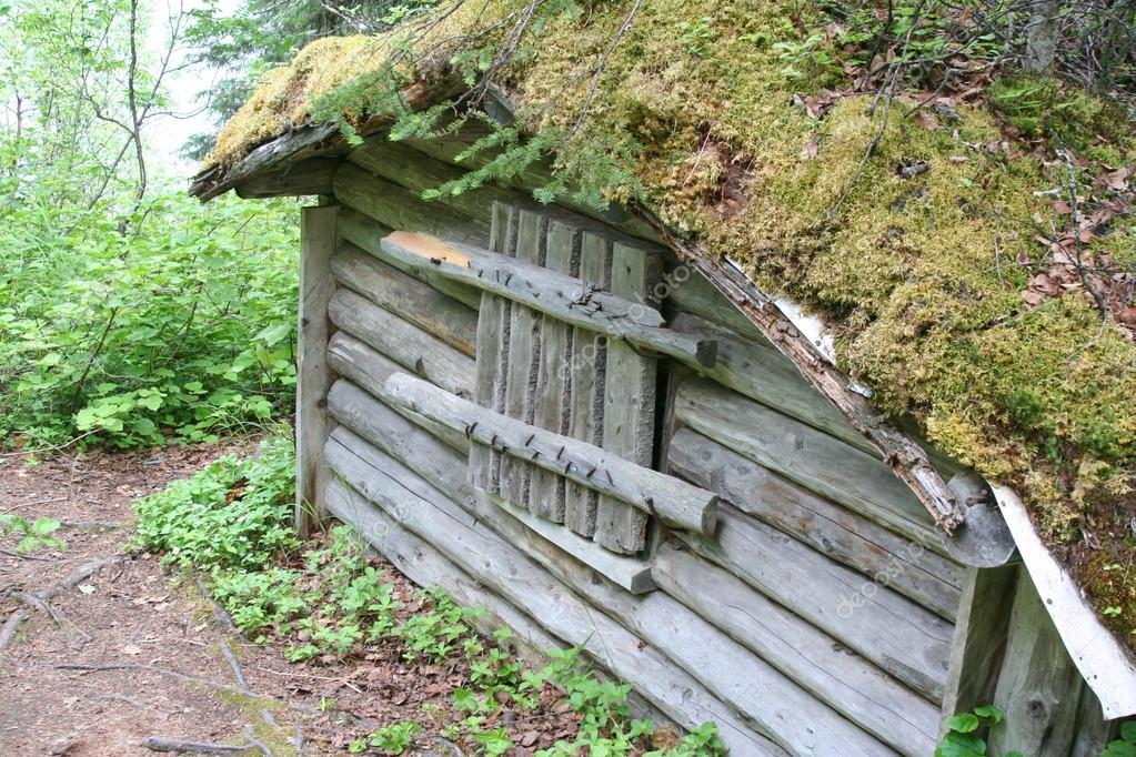 foto casa bosque: