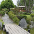 Japanese gardens in La Serena Chile — Stock Photo