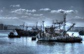 Harbour at Coquimbo Chilehar — Stock Photo