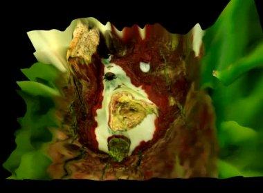Simulações em 3d flor — Vídeo stock