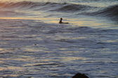 Surfers in the ocean at sunset — Stock Photo