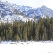Stock Photo: Winter Scene. Banff, Alberta, Canada