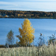 Ozerninskoe reservoir — Stock Photo
