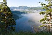 Brouillard au-dessus de la rivière — Photo