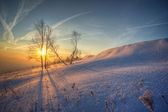 Soluppgång i vinter — Stockfoto